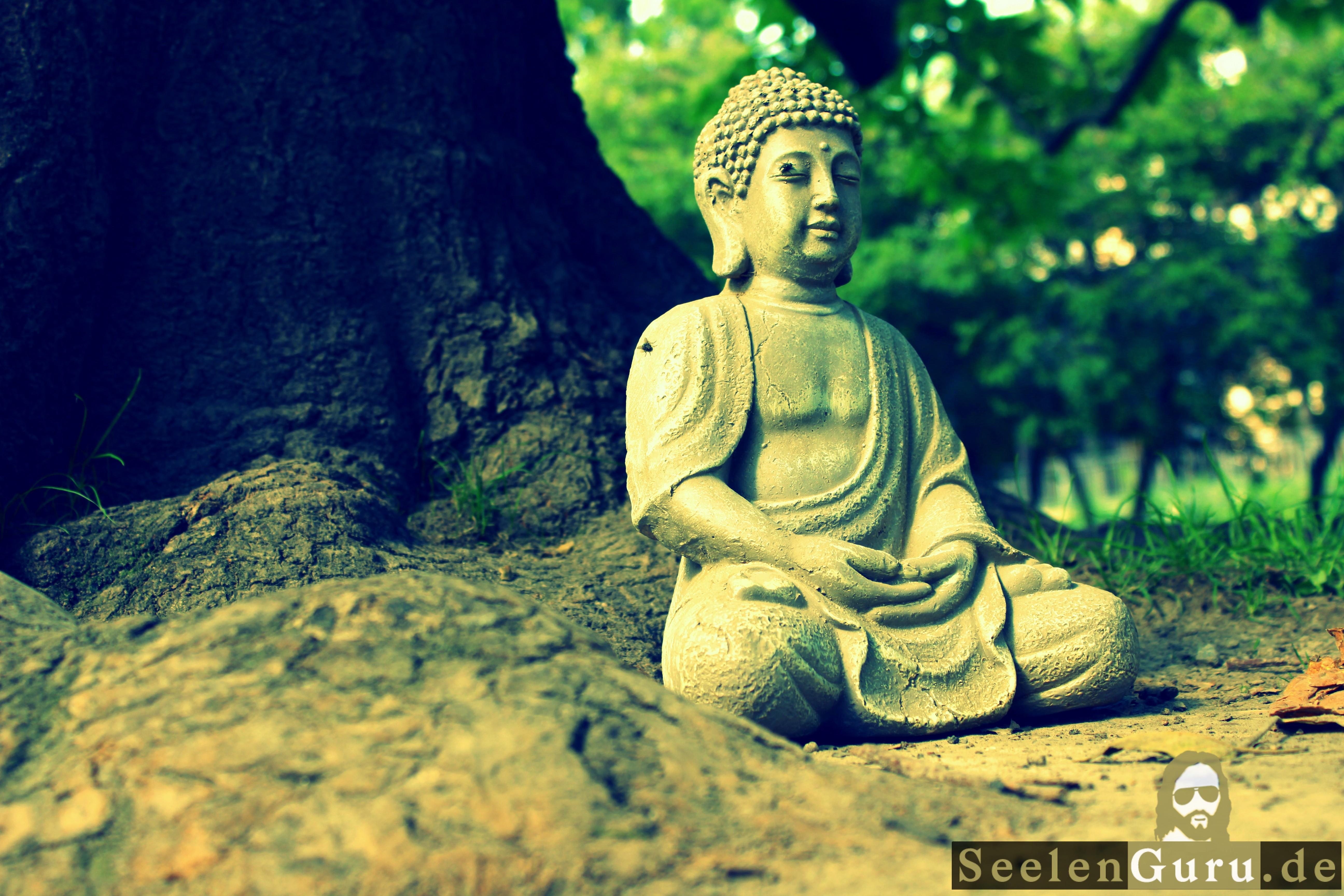 Meditierender Buddha wird von Fliegen besetzt.