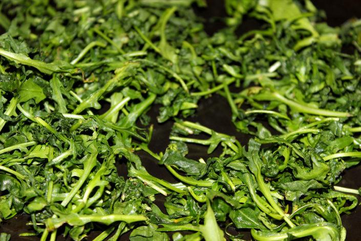 Rucola auf Backblech für Pesto