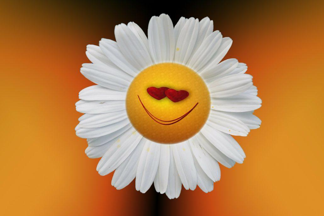 Was macht Glücklich - kleine Liste zum glücklich werden